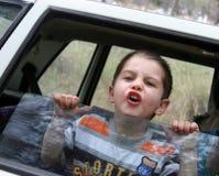 O menino. Fotos de Stock