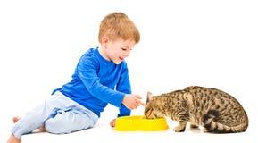 O menino alimenta o gato Fotos de Stock Royalty Free