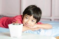 O menino asiático pequeno que wating para a planta nova do bebê cresce acima Fotos de Stock Royalty Free