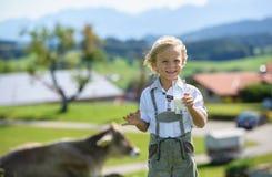 O menino bávaro de sorriso bebe o leite no prado com vaca Cumes no fundo germany Fotos de Stock