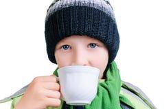 O menino bebe o chá Imagem de Stock Royalty Free