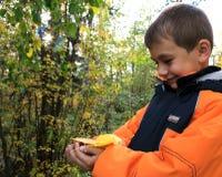 O menino com folha amarela nas palmas fotografia de stock royalty free