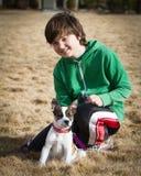 O menino com gado persegue/filhote de cachorro híbrido do pugilista Fotografia de Stock Royalty Free