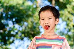 O menino come a morango Fotos de Stock Royalty Free