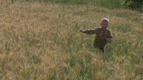 O menino corre em um campo de grão filme