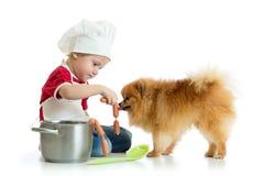 O menino da criança joga o cozinheiro chefe com cão O cozinheiro weared criança alimenta o cachorrinho do Spitz Fotos de Stock