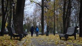 O menino da mulher e do adolescente anda no outono no parque video estoque