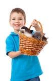 O menino de sorriso pegara uma cesta com gatinhos Imagens de Stock Royalty Free