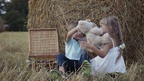 O menino e a menina estão jogando ursos macios do brinquedo do divertimento Uma menina em um vestido branco Por do sol video estoque