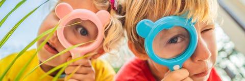 O menino e a menina est?o olhando em uma lupa na perspectiva do jardim BANDEIRA de educação da casa, FORMATO LONGO foto de stock