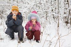 O menino e a menina sentam-se para baixo com o petard na madeira do inverno Fotos de Stock