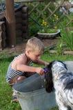 O menino e o cão. Foto de Stock Royalty Free