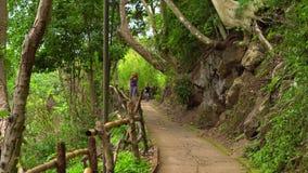 O menino em um parque tropical cai para baixo correndo abaixo da estrada video estoque