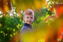 O menino em um revestimento listrado olha através das folhas da árvore Imagem de Stock Royalty Free