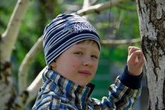 O menino está perto do vidoeiro Imagens de Stock