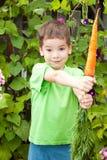 O menino feliz pequeno está comendo cenouras em um jardim Imagens de Stock Royalty Free