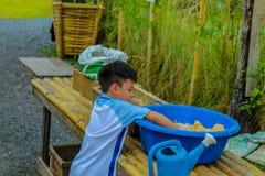 O menino foi misturado com o alimento para que os animais comam fotos de stock