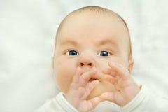 O menino infantil olha camuflar da câmera, mãos Fotos de Stock Royalty Free