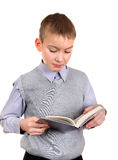 O menino lê um livro Imagens de Stock