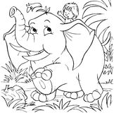 O menino monta um elefante Foto de Stock Royalty Free