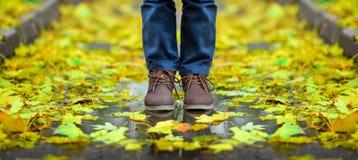 O menino nas botas é a queda na entrada de automóveis coberta com as folhas de bordo amarelas fotografia de stock royalty free