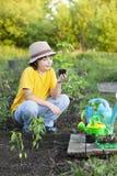 O menino no jardim admira a planta antes de plantar Broto verde nas mãos das crianças imagem de stock royalty free