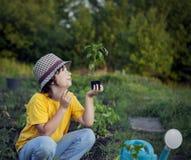 O menino no jardim admira a planta antes de plantar Sprou verde fotos de stock