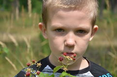 O menino no parque Imagem de Stock