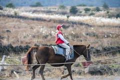 O menino novo aprende como montar um cavalo na escola de equitação Foto de Stock