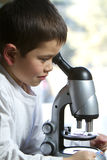 O menino novo bonito olha em seu microscópio imagens de stock