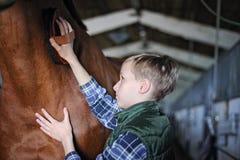 O menino novo está preparando o cavalo Fotos de Stock Royalty Free