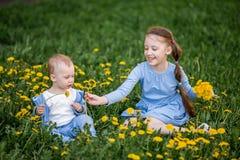 O menino pequeno e a menina caucasianos que sentam-se no dente-de-leão florescem o prado imagem de stock royalty free