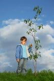 O menino planta a árvore fotos de stock