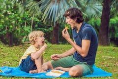 O menino pré-escolar saudável bonito da criança come batatas de batatas fritas com ketchup com seu pai criança que come o aliment imagens de stock royalty free