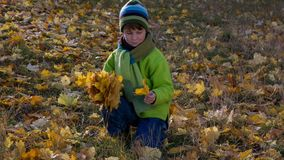 O menino que recolhe o ramalhete com amarelo sae no parque vídeos de arquivo