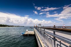 O menino saltado da ponte à água divertimento do verão no tempo quente Salte na água Foto de Stock