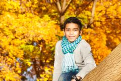 O menino senta-se na árvore no parque Fotos de Stock Royalty Free