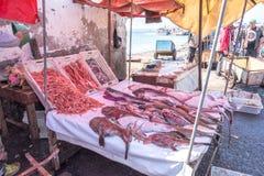 O mercado de peixes em Essaouira Fotos de Stock