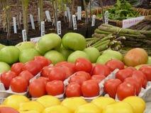 O mercado dos fazendeiros coloridos Fotografia de Stock Royalty Free