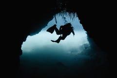 O mergulhador de mergulhador explora uns manguezais Foto de Stock
