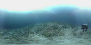 o mergulhador de 360 vr nada em um recife de corais vídeos de arquivo
