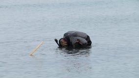 O mergulhador do homem está estando na água até seus ombros, guardando as aletas, indo mergulhar video estoque