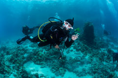 O mergulhador encontrou o polvo Foto de Stock Royalty Free
