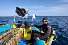 O mergulhador está a ponto de cair Fotografia de Stock