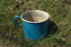 O metal velho do esmalte golpeou o jardim da grama da caneca fotografia de stock royalty free