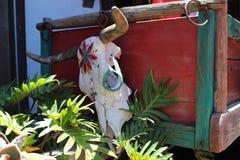 O mexicano pintou o crânio do crânio da vaca/açúcar da vaca foto de stock