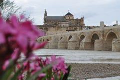 O Mezquita de Córdova, Espanha Fotografia de Stock Royalty Free