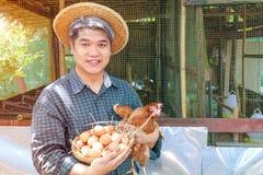 O midle de Smilling envelheceu a galinha da terra arrendada da mão do homem do cabelo e a cesta cinzentas dos ovos em seu negócio imagens de stock royalty free