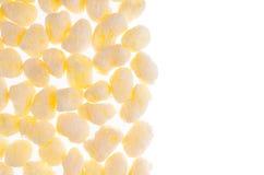 O milho amarelo doce cola como a beira decorativa com o espaço da cópia, isolado no fundo branco, vista superior Fotos de Stock