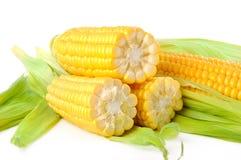 O milho em um fundo branco Imagens de Stock